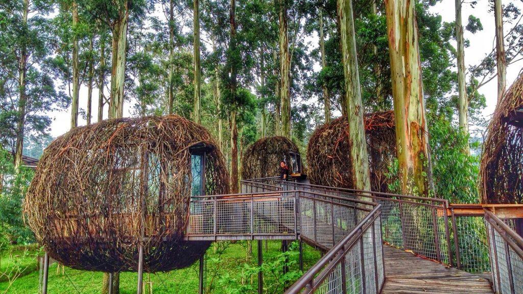 6 Wisata Alam di Bandung yang Instagrammable 2