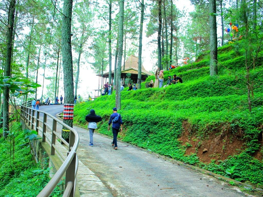 6 Wisata Alam di Bandung yang Instagrammable 3
